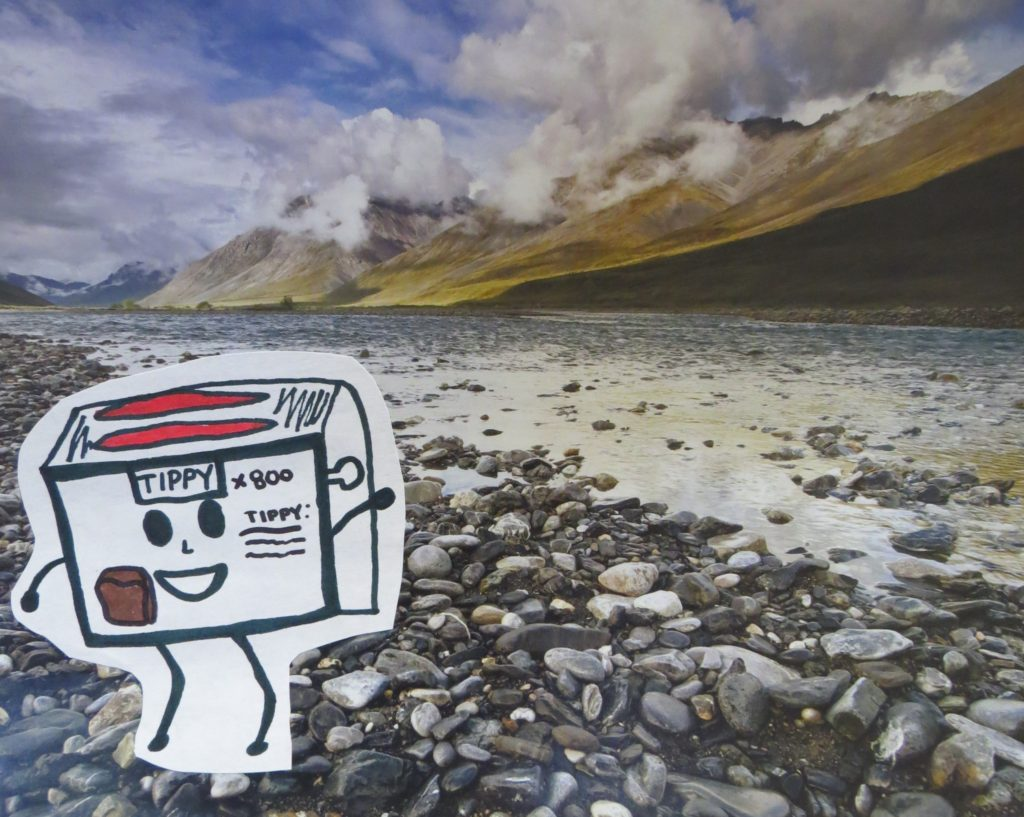 Toaster in a mountain river scene
